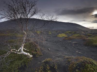 Desolate Black Ash Landscape at the Foot of Hverfjall Volcano, Myvatn, Northern Iceland-Patrick Dieudonne-Photographic Print