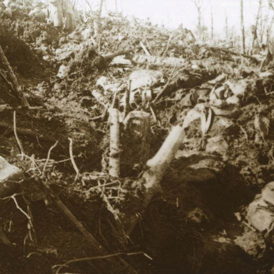 Destroyed shelter, Les Éparges, northern France, 1915-Unknown-Photographic Print