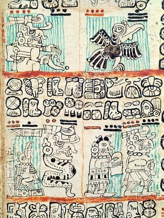 https://imgc.artprintimages.com/img/print/detail-from-a-mayan-codex_u-l-omcjt0.jpg?p=0