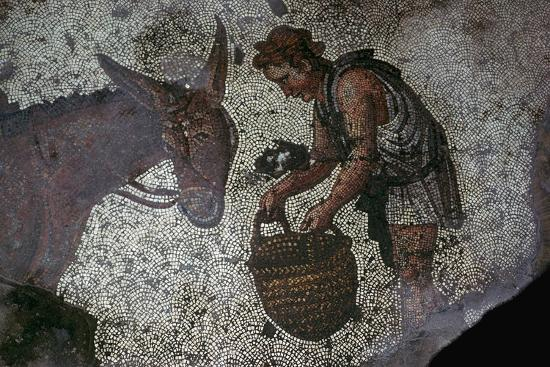Detail of a floor mosaic in the Great Palace in Istanbul, 6th century. Artist: Unknown-Unknown-Giclee Print