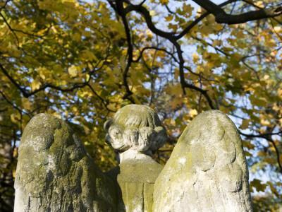 https://imgc.artprintimages.com/img/print/detail-of-angel-statue-on-tomb-at-catholic-powazki-cemetery-cmentarz-powazkowski_u-l-pd53u50.jpg?p=0