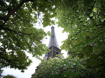Detail of Eiffel Tower, Paris, France-Jim Zuckerman-Photographic Print