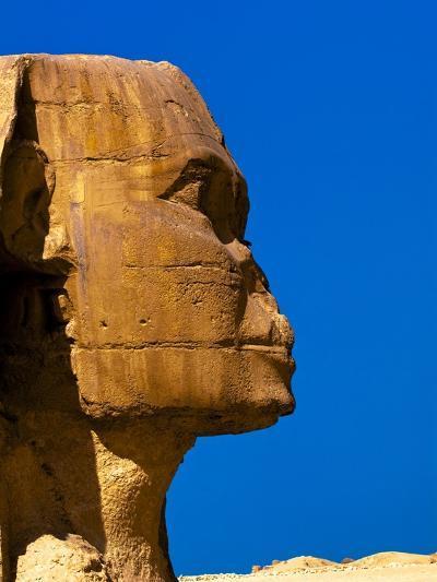 Detail of Great Sphinx at Giza-Blaine Harrington-Photographic Print