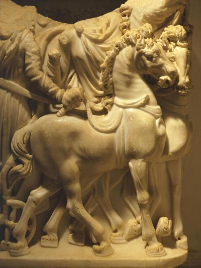 Detail of Marble Sarcophagus Depicting Pair of Horses, from Algeria--Giclee Print