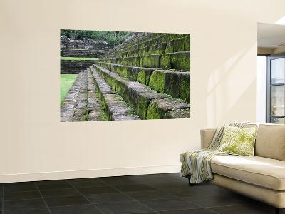 Detail of Moss Covered Stone Steps at Mayan Ruins of Quirigua-Paul Kennedy-Wall Mural