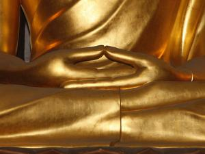 Detail of Mudra, Buddha Statue, Paris, France, Europe
