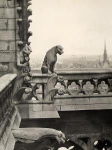 Detail of One of the Two Terraces with Monstrous Figures, Cathedral of Notre-Dame, Paris