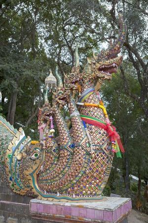 https://imgc.artprintimages.com/img/print/detail-of-the-seven-headed-naga-guarding-the-300-steps-to-wat-phrathat-doi-suthep-thailand_u-l-pow54m0.jpg?p=0