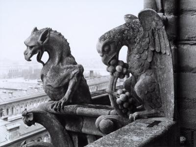 Detail of Two Monstrous Figures Located on a Terrace in the Cathedral of Notre-Dame, Paris