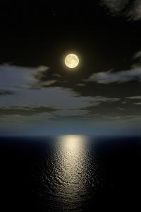 Full Moon Setting by Detlev Van Ravenswaay