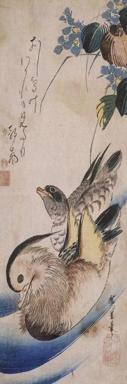 Deux canards nageant-Ando Hiroshige-Giclee Print
