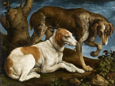 Deux chiens de chasse attachés à une souche-Jacopo Bassano-Giclee Print