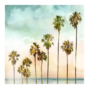 Beach Palms I by Devon Davis