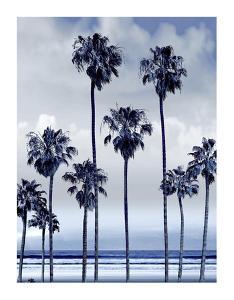 Beach Palms Indigo II by Devon Davis