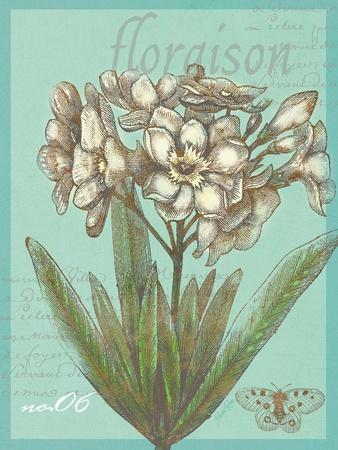 Floraison Nouveau 1