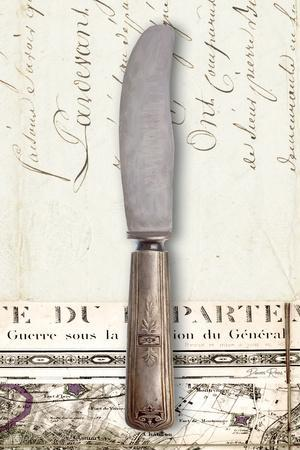 French Cuisine Knife