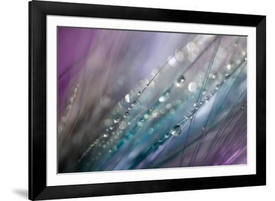 Dew 2-Ursula Abresch-Framed Photographic Print