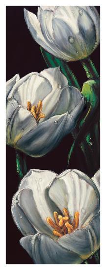 Dewdrop Tulips-Alma'ch-Giclee Print