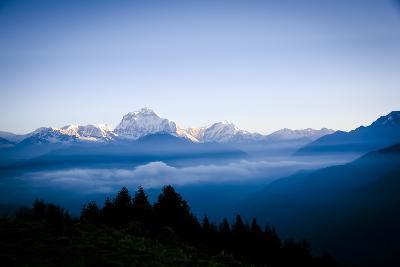 Dhaulagiri, an 8000 Meter Peak in the Morning Sun, Poon Hill, Annapurna Circuit, Ghorepani, Nepal-Dan Holz-Photographic Print