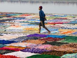 A Dhobiwala (Laundryman) Walking Among Washing on Banks of Yamuna River by Diana Mayfield