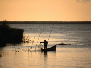 Fisherman Checking Nets at Dawn on Danube Delta, Tulcea, Romania, by Diana Mayfield