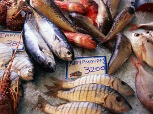 Market Fish, Rethymno, Crete, Greece by Diana Mayfield