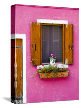 Pot Plant and Vividly Painted Facade, Burano