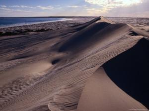 Sand Dunes on the Great Australian Bight, Australia by Diana Mayfield