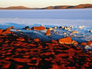 White Saltpan and Red Dunes, Lake Gairdner, Australia by Diana Mayfield
