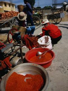 Women from Small Patou Island Grind Chilies to Powder, Dali, Yunnan, China by Diana Mayfield