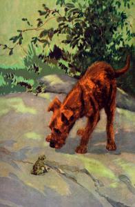 Irish Terrier Puppy by Diana Thorne