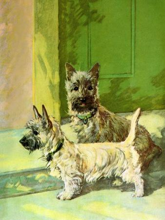 The Cairn Terrier Pair