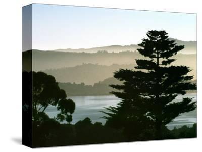 Hazy Mountain Lake, Seen from Top of Hill in Tiburon, Northern California, USA