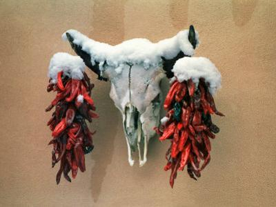 Snowy Cow Skull on Wall with Chili Ristras Hanging on Horns, Santa Fe, New Mexico, USA by Diane Miller