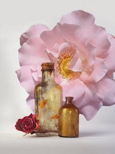Still Life of Bottles and Roses by Diane Miller