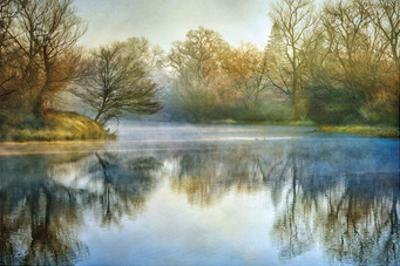 Blue Mist by Diane Poinski