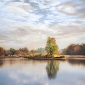 Morning Mirror 1 by Diane Poinski