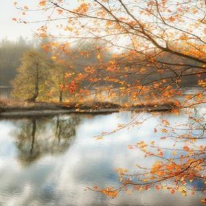Morning Mirror 2 by Diane Poinski
