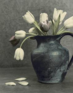 Spring Blooms II by Diane Poinski