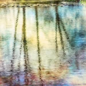 Sunset Ripple 1 by Diane Poinski