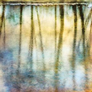 Sunset Ripple 2 by Diane Poinski