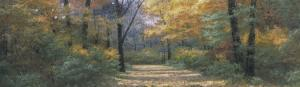 Autumn Road Panel by Diane Romanello