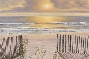 Beach Light by Diane Romanello