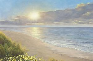 Beach Serenity by Diane Romanello