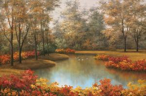 Beauty of Autumn by Diane Romanello