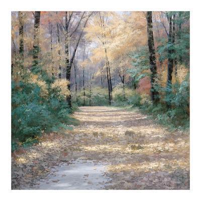 Diane Romanello Autumn Leaves Landscape Nature Tree Path Fall Print Poster 11x14