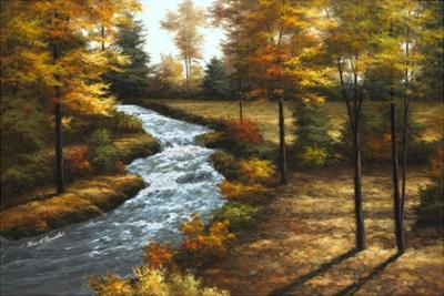 Roaring Brook by Diane Romanello