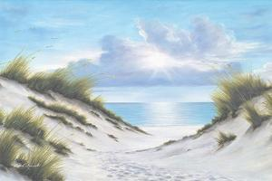 Sand and Sea by Diane Romanello