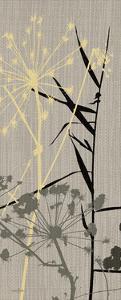 Grasses 1 Gray by Diane Stimson