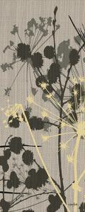 Grasses 2 Gray by Diane Stimson